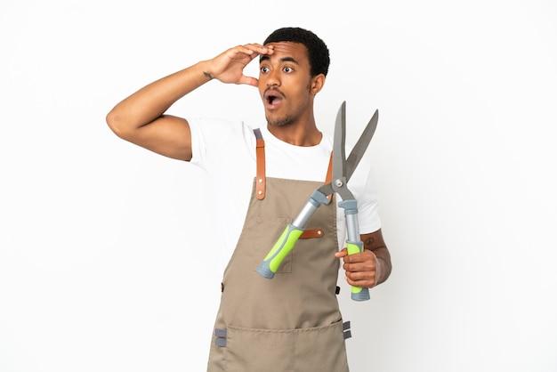 Giardiniere afroamericano uomo con forbici da potatura su sfondo bianco isolato facendo un gesto a sorpresa mentre guarda di lato