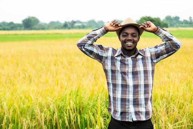Agricoltore africano in piedi in campo di riso biologico con sorriso e felice. concetto di agricoltura o coltivazione