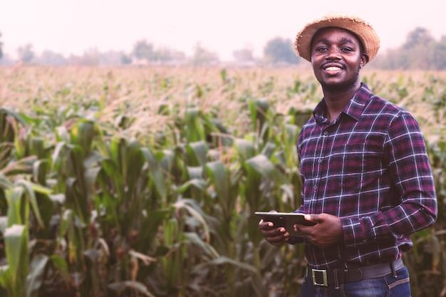 Agricoltore africano con cappello in piedi nel campo della piantagione di mais