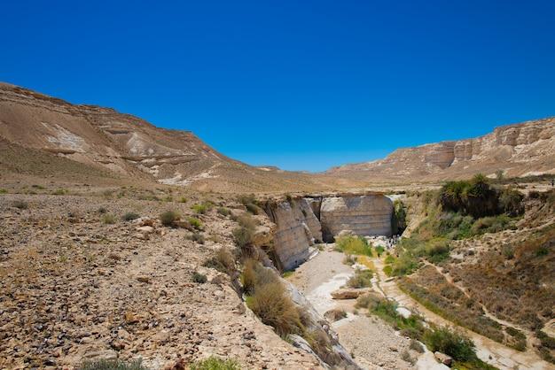 Agar nel deserto in israele