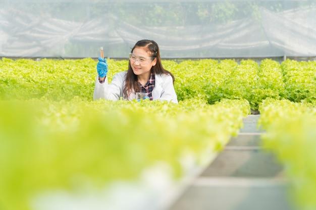 Ingegnere agricolo che controlla l'acidità e l'alcalinità dell'acqua nella fattoria idroponica della serra e misura la crescita delle verdure biologiche prima della raccolta sul mercato. concetto di tecnologia agricola