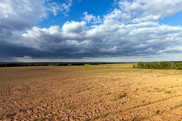Campo agricolo in primavera di terreno arancio scuro su cui non sono ancora cresciute nuove piante