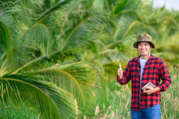 Lavoro agricolo nella piantagione di cocco utilizzando compresse controllare la qualità dell'albero di cocco.