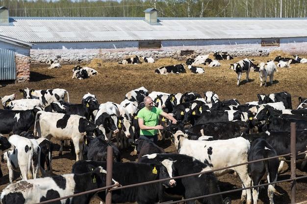 Industria agricola, allevamento, persone e zootecnia