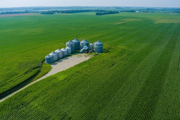 Silos di lavorazione dell'elevatore dell'impianto agricolo per l'essiccazione e la pulizia dello stoccaggio del grano dei prodotti agricoli negli usa