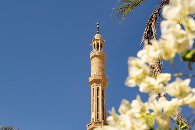 Moschea al-mustafa a sharm el sheikh