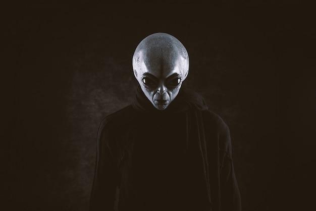 La creatura aliena ha un messaggio per gli umani. umanoide gentile grigio da un'altra serie di ritratti di pianeti.
