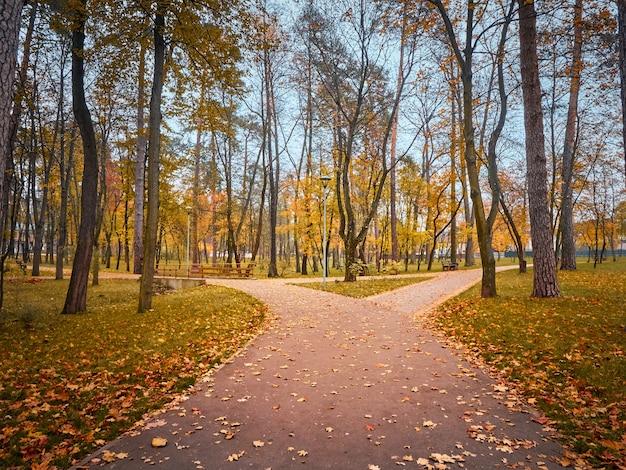 Vicolo nel parco in autunno con alberi colorati.