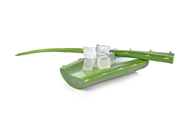 Aloe vera isolato su bianco