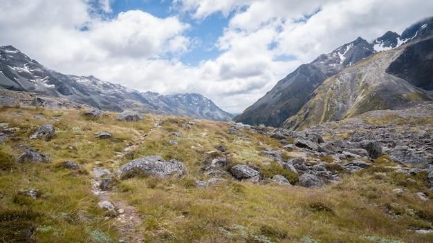 Paesaggio alpino con montagne rocce ciuffi secchi e nuvoloso skynelson laghi nuova zelanda