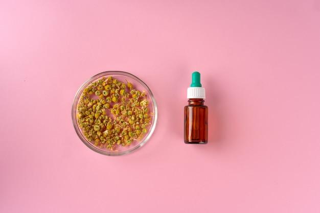 Concetto di medicina alternativa. medicina omeopatica a base di erbe naturali