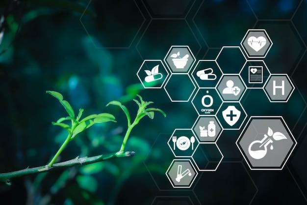 Medicina alternativa con il concetto futuristico di tecnologia ai rimedi erboristici naturali