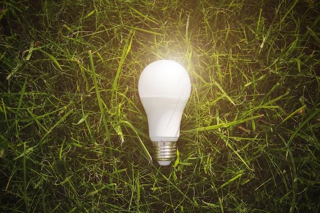 Concetto di tecnologia alternativa. lampadina in natura verde in condizioni di luce intensa.