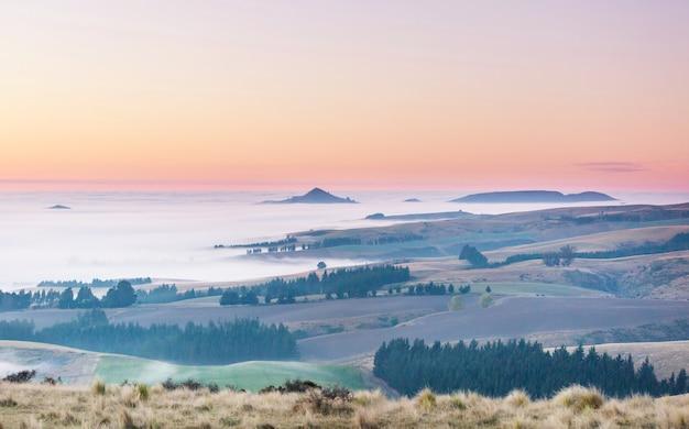 Incredibili paesaggi rurali nebbiosi al mattino. nuova zelanda bellissima natura