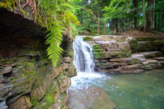 Incredibile paesaggio di una bellissima cascata sul fiume di montagna con acqua schiumosa bianca che cade dalla scogliera rocciosa nella foresta pluviale estiva.