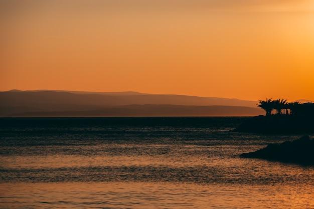 Incredibile vista sul mare al tramonto con palme e cielo arancione a brela, croazia, riviera di makarska