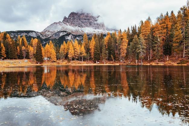 Splendida vista sulle maestose montagne con boschi di fronte a loro al giorno di autunno