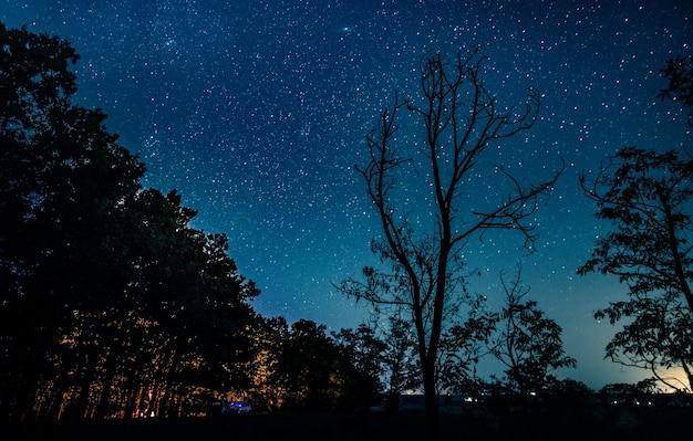 Splendida vista del cielo con le stelle