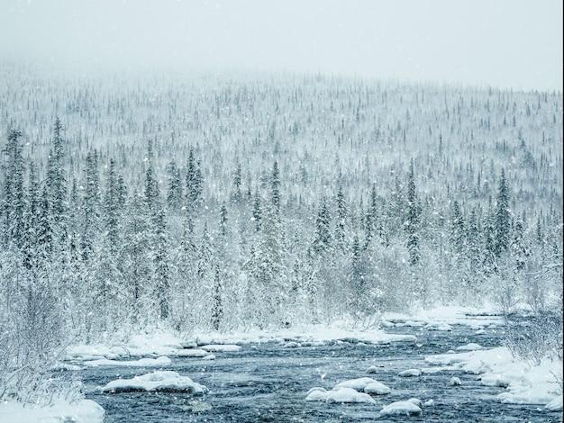 Incredibile paesaggio invernale con un fiume tra colline innevate ricoperte di foreste di conifere.
