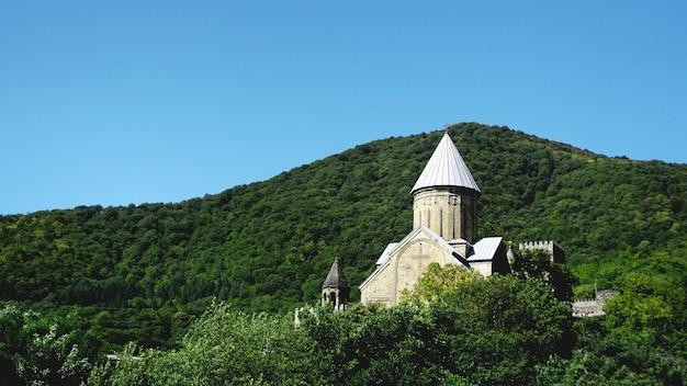 Panorama complesso della chiesa e del castello di ananuri in georgia all'estate