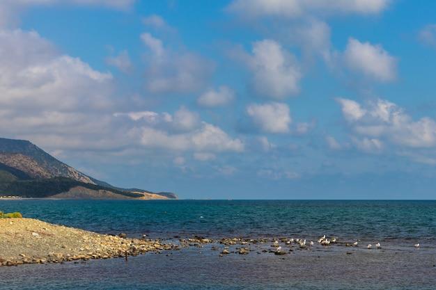 Anapa russia 11 giugno 2021 spiaggia sassosa della costa del mar nero nel villaggio di bolshoy utrish