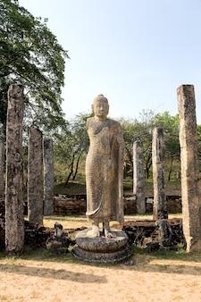 Antica statua del buddha a polonnaruwa