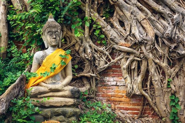 Statua antica del buddha con le radici dell'albero e la priorità bassa del muro di mattoni