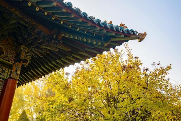 Antichi edifici e scenari naturali nel parco in autunno
