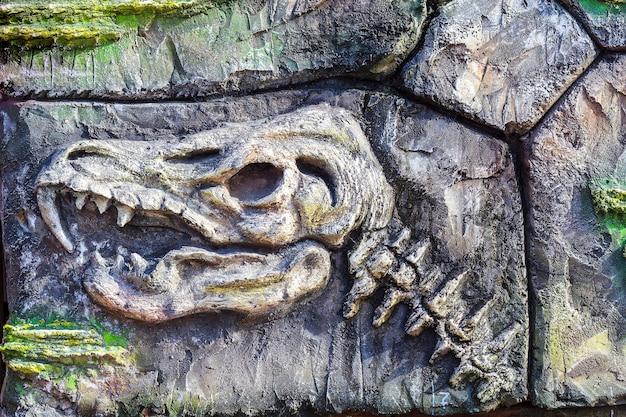Antichi organismi fossili sul muro di pietra