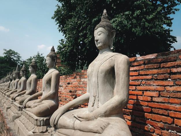 Antiche statue bianche di buddha con sfondo di superficie pagoda in mattoni ad ayuthaya, thailandia