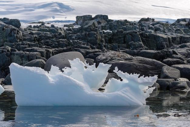 Paesaggio antartico con iceberg