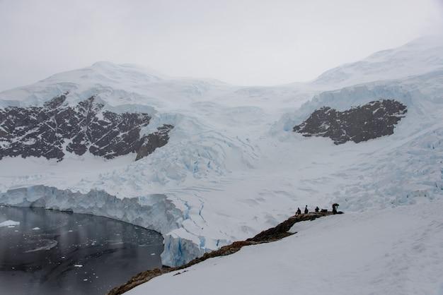 Vista sul mare antartica con ghiaccio