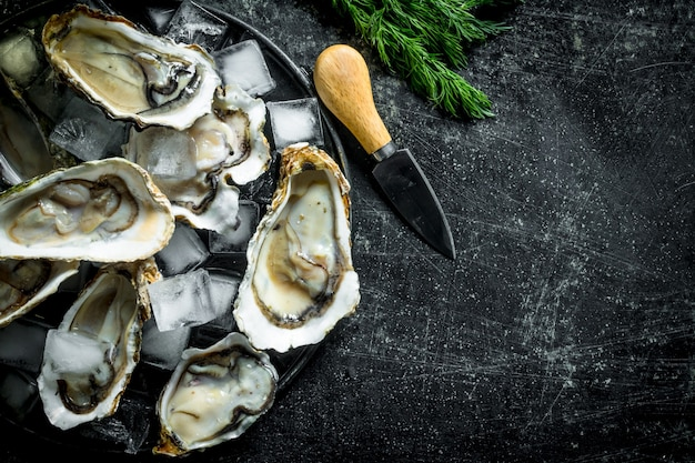 Appetitose ostriche crude con cubetti di ghiaccio e coltello.