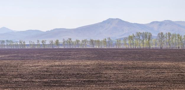 Campo coltivabile all'inizio della primavera, paesaggio agricolo