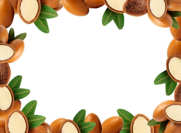 Cornice di semi di argan isolato olio di argan su sfondo bianco bio cometici naturali e oli per la p...
