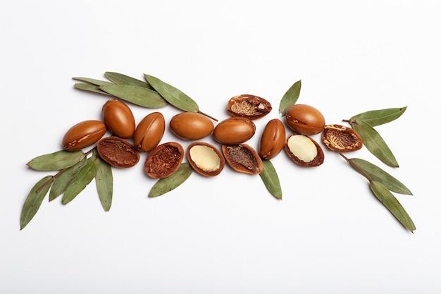 Semi di argan isolati su uno sfondo bianco noci di olio di argan con cosmetici vegetali e oli naturali indietro...