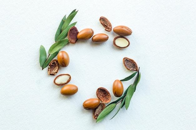 Semi di argan isolati su uno sfondo bianco. olio di argan noci con pianta.