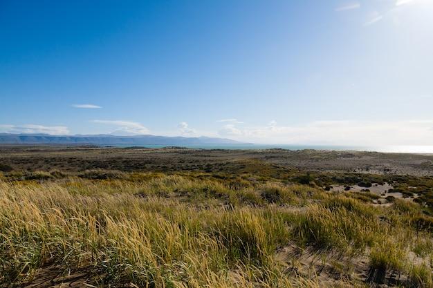 Vista del lago argentino da el calafate, patagonia, argentina paesaggio della patagonia