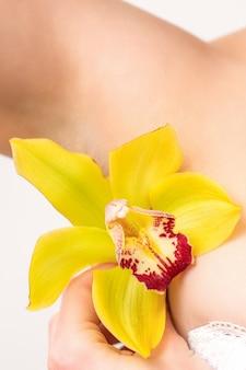 Epilazione ascella. chiuda in su dell'ascella femminile con il fiore di giglio giallo isolato sulla parete bianca