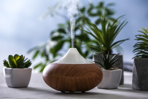 Diffusore di olio aromatico e piante grasse su sfondo sfocato
