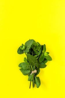 Erbe aromatiche. distesi