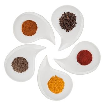 Spezie aromatiche su un piatto su uno sfondo bianco. tracciato di ritaglio