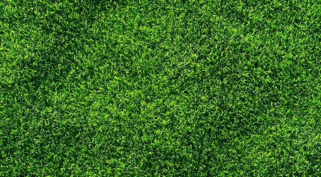 Sfondo di erba artificiale.