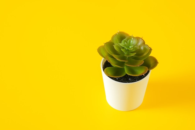 Fiore verde artificiale con foglie in una pentola, copia dello spazio
