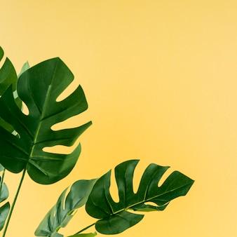 Monstera artificiale lascia su sfondo giallo