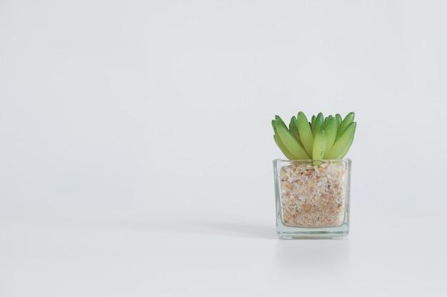 Pianta artificiale in vaso di vetro isolato su sfondo bianco con spazio di copia
