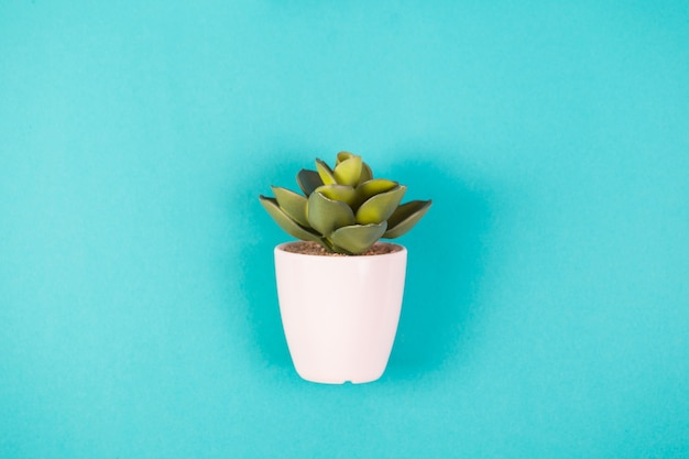 Pianta artificiale in vaso bianco su sfondo blu