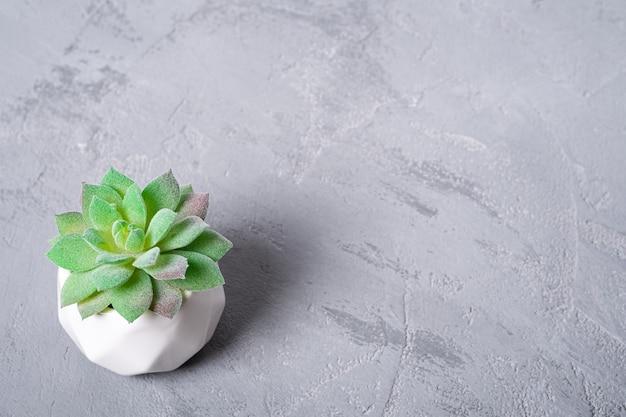Pianta succulenta artificiale in vaso, copia spazio