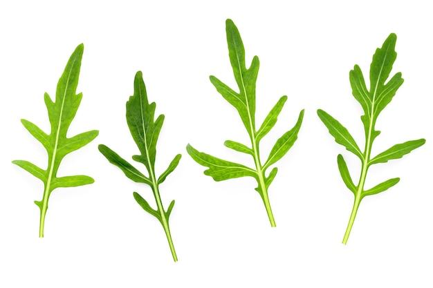 Foglie di rucola isolati su sfondo bianco. foglie di rucola selvatica fresca del primo piano sulla vista superiore del fondo bianco.