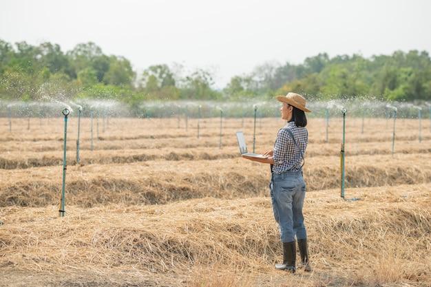 Asia giovane agricoltore femminile in cappello in piedi in campo e digitando sulla tastiera del computer portatile. donna con il computer portatile che supervisiona il lavoro sui terreni agricoli, concetto di ecologia, trasporti, aria pulita, cibo, prodotto biologico
